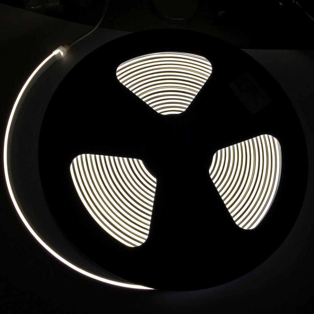 Néon LED 6 mm allumé.
